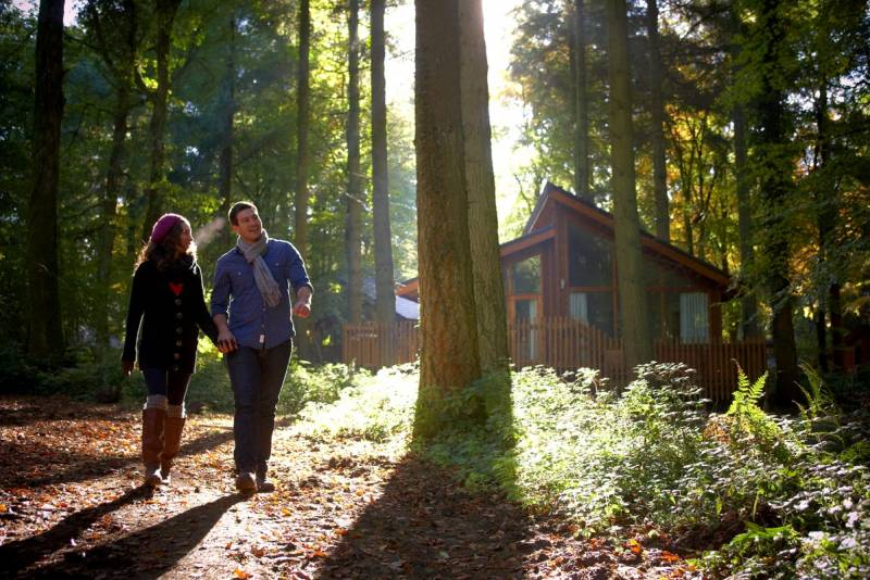 Win a forest retreat weekend for 4